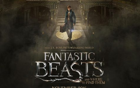 Fantastic Beasts falls just short of fantastic