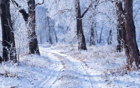 Winter break-down