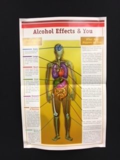 A sign in the MHS health room demonstrating the risks of alcohol.