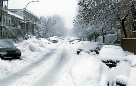 McLean in for a snowy winter