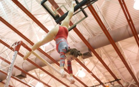 McLean gymnastics win second in states