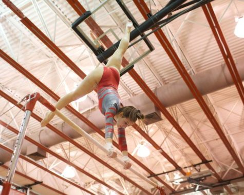 McNastics wins districts