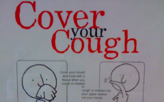 Flu season strikes McLean