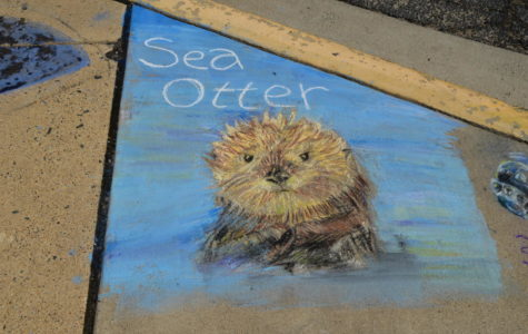 Raising awareness with chalk