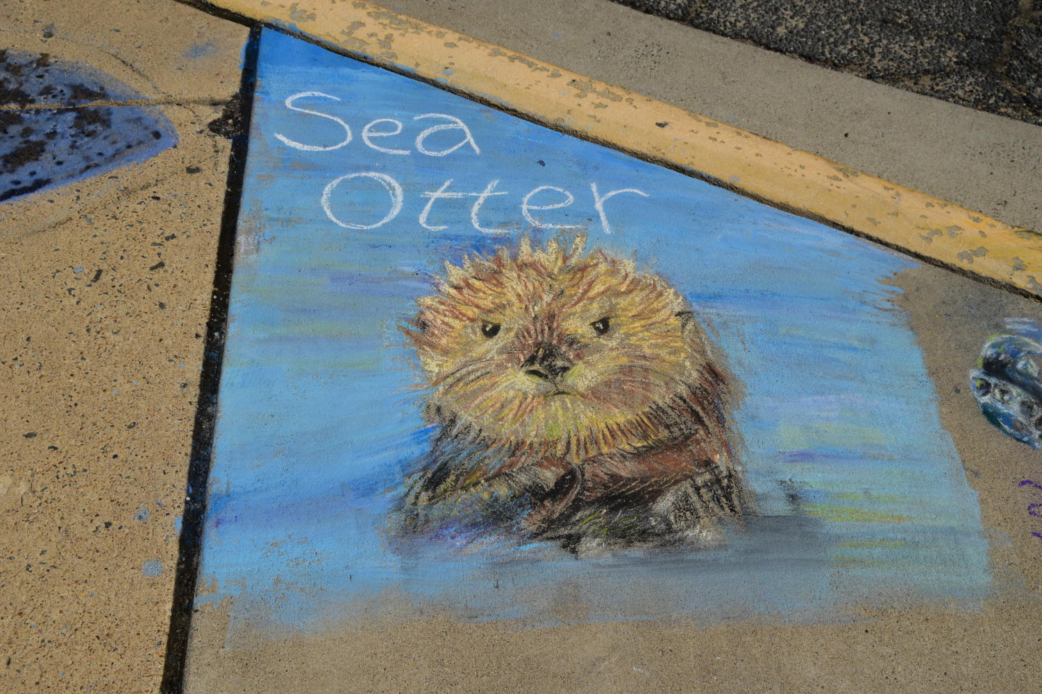 The endangered Sea Otter courtesy of an AP art student.