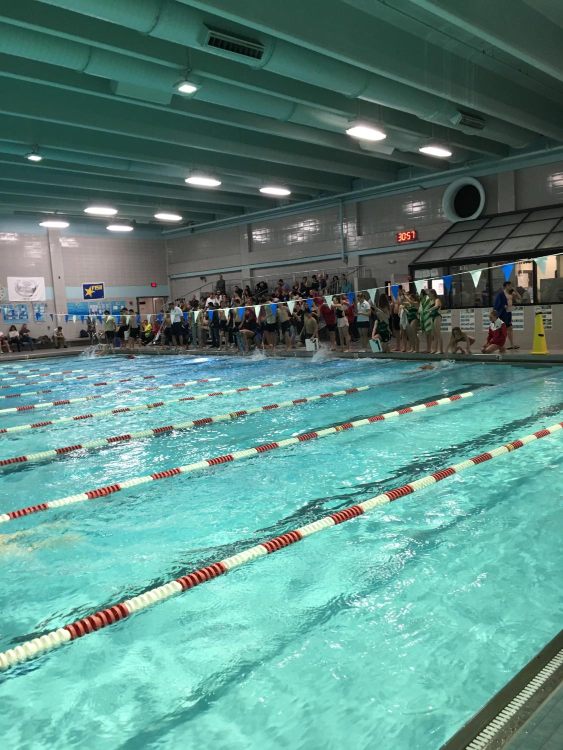 McLean swimmers jump in ready to complete warm-ups for the meet. Swimmers were excited to compete.