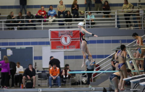 McLean dives into competition