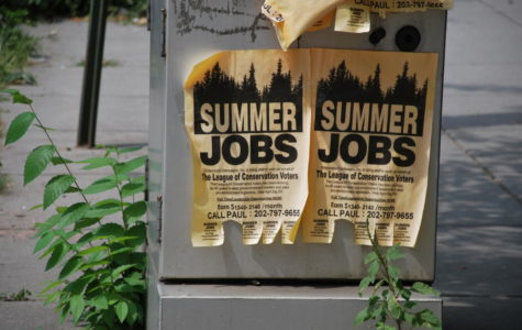 Students take advantage of summer jobs