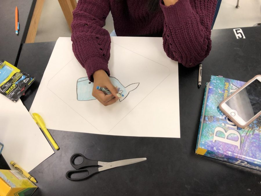 Student draws a picture of whale to hang up in the science classroom.