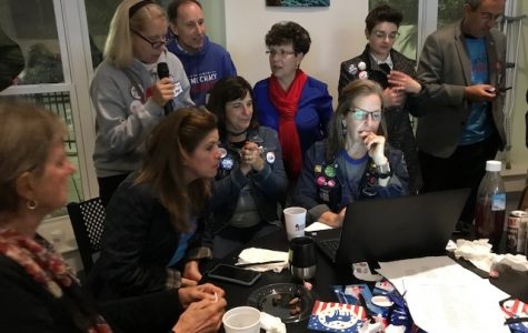 VA turns blue in 2019 election