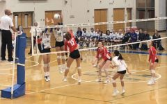 McVolleyball loses in regional semifinals