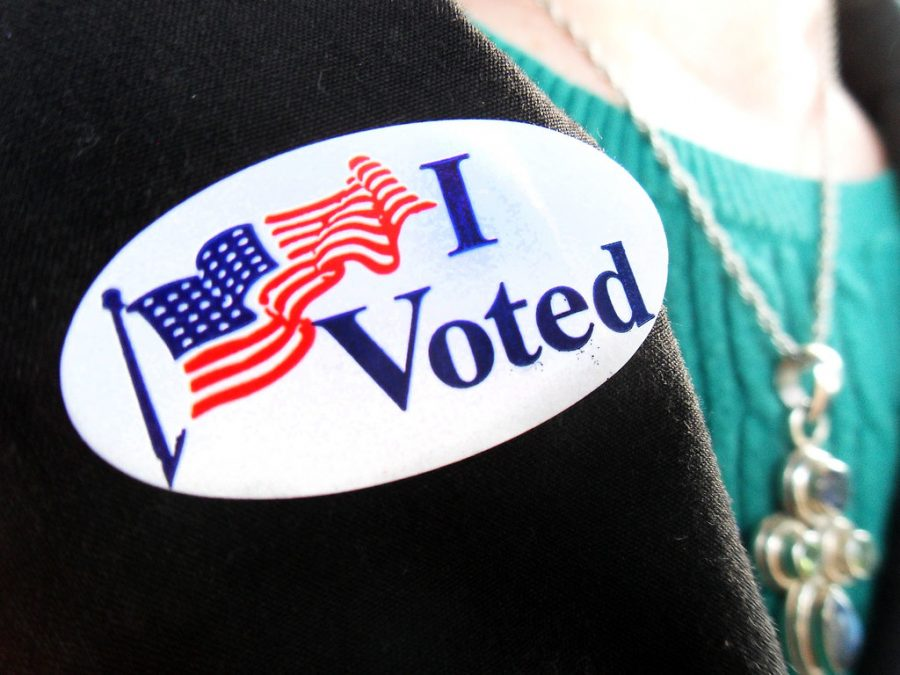 McLean students vote in school board elections