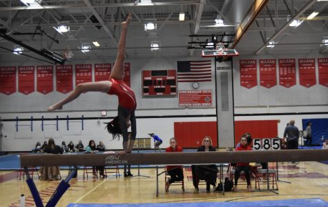 McLean gymnastics team tumbles into fourth place