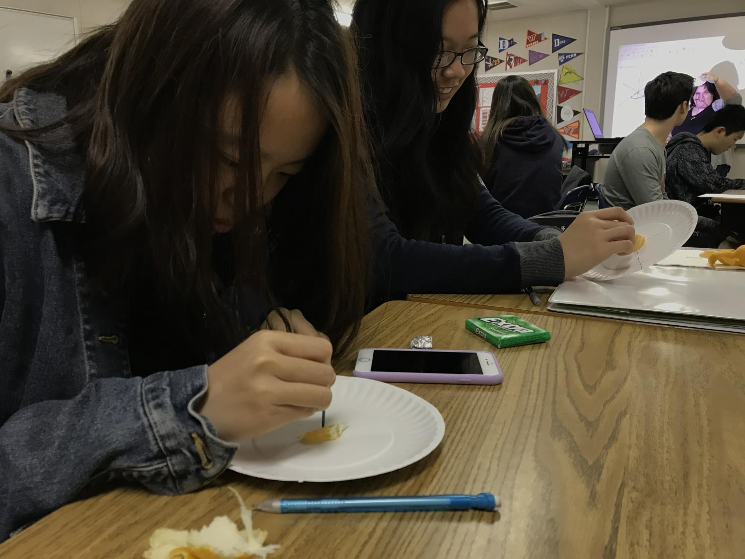 Senior Tiffany Chen (left) punctures a plate with a toothpick while senior Christina Ni (right) smiles as she understands what's going on. On this day, students used orange slices, which is just one of the many different types of food Quarry has used in her classroom.