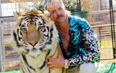 Tiger King: Behind the murder, mayhem and madness