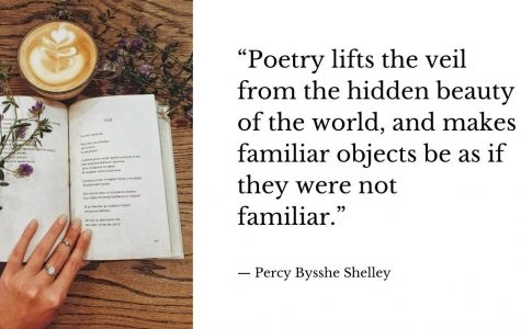 Poetry Publications from Summer Class